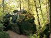 56-skamieniale-miasto-w-ciezkowicach-lisi-wawoz-fot-piotr-firlej-www-skamienialemiasto-pl_