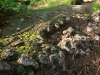 65-skamieniale-miasto-w-ciezkowicach-rejon-cyganki-fot-piotr-firlej-www-skamienialemiasto-pl_